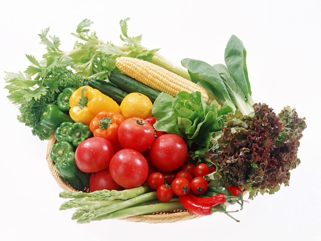 Nên bảo quản thực phẩm trong tủ lạnh trong thời gian bao nhiêu lâu?